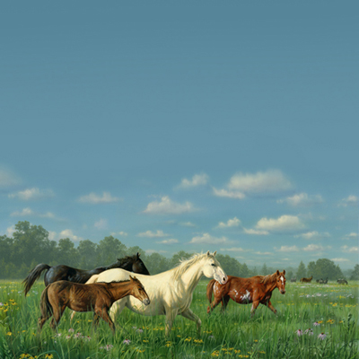 SugarTree Prairie Horses